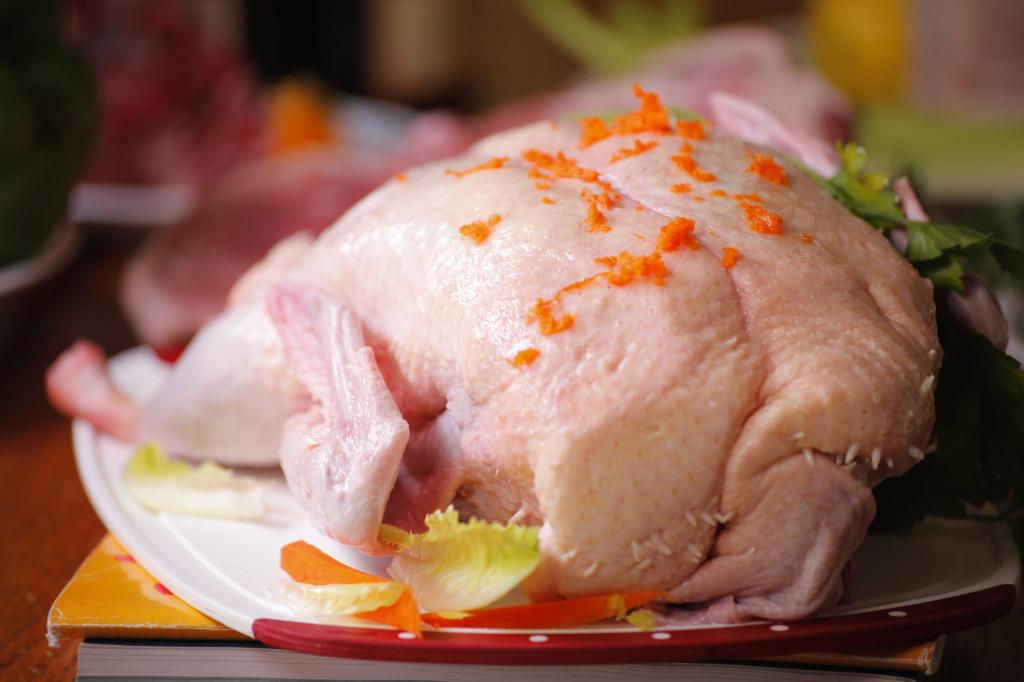 DUCK chicken Raw Dog Food Menu – Nutrition & Balanced Diet DUCK 1024x682