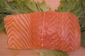 Salmon salmon Salmon – Supporting Your Pet Heart Health & Function Salmon1 300x199