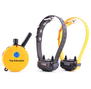 et-402 2 dog educator e-collar 3/4 mile remote dog trainer ET-402 2 Dog Educator E-Collar 3/4 Mile Remote Dog Trainer ET 402TS1 300x295