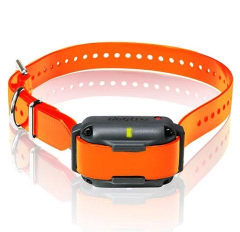 Dogtra 2300 Additional Receiver TEAM-K9 e-collar training Mississauga dogtra 2300 additional receiver Dogtra 2300 Additional Receiver Dogtra 2300 Additional Receiver 480x464