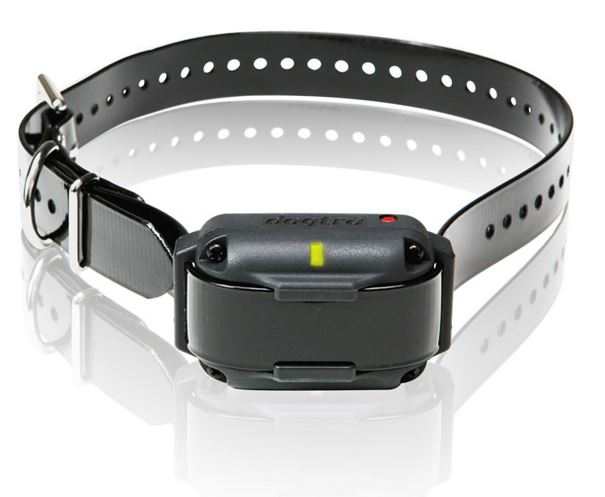 Dogtra 2300 TEAM-K9 e-collar training Mississauga Toronto Brampton Oakville Scarbourough