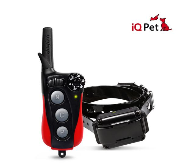 Dogtra IQ PLUS TEAM-K9 e-collar training Mississauga Toronto Brampton Oakville Scarbourough