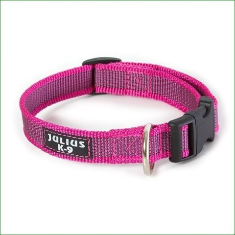 Julius-k9, dog collar, TEAM-K9, Mississauga, Oakville, Brampton, Ontario julius-k9 Julius-K9 Color & Gray Collars – Pink Colour Gray Collar Pink 480x480