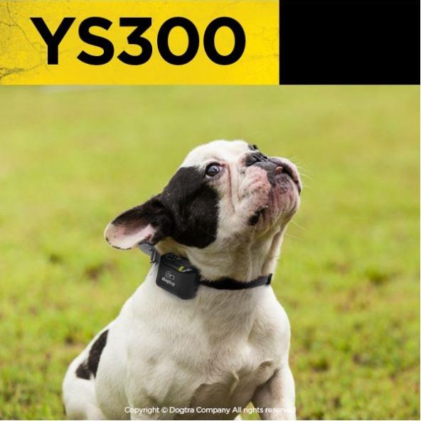 dogtra, YS300, bark collar, TEAM-K9, mississauga, ontario, canada