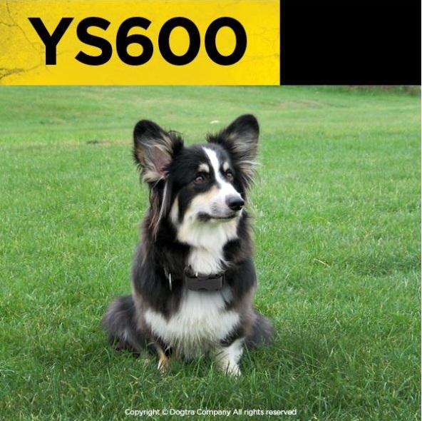 dogtra, YS600, bark collar, TEAM-K9, mississauga, ontario, canada
