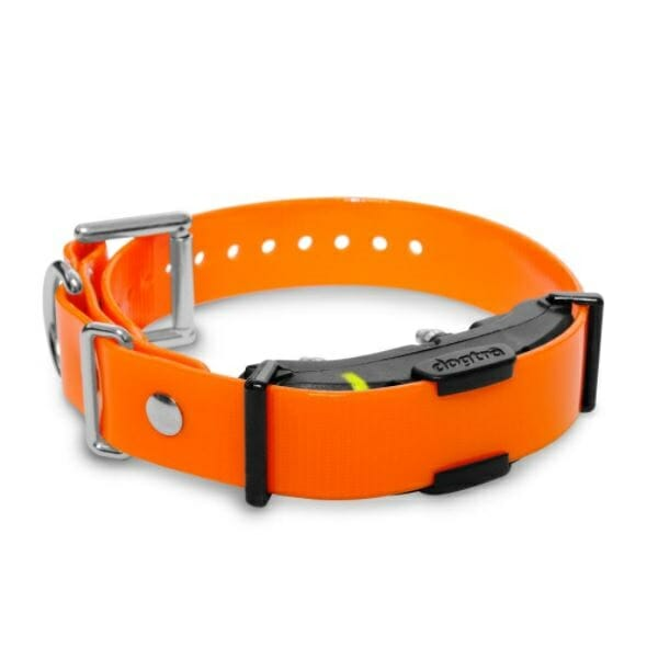 dogtra, ecollar, e-collar, dogtra ARC, ARC receiver, TEAM-K9, dog training