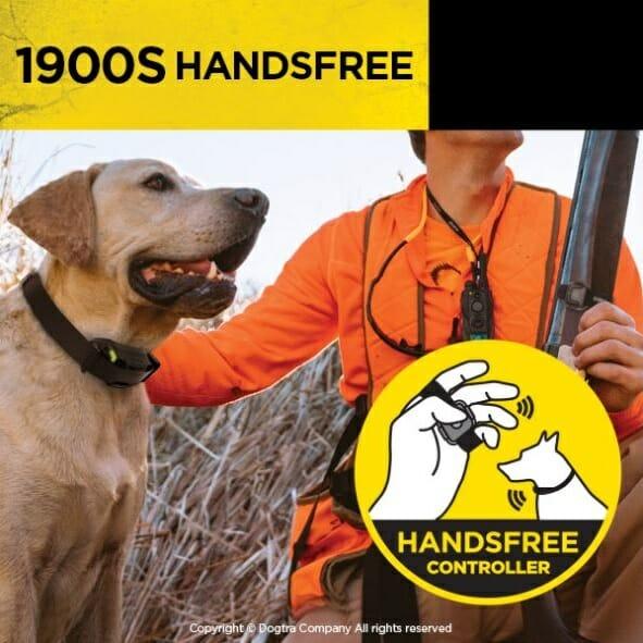 dogtra, ecollar, e-collar, dogtra 1900S, handsfree, TEAM-K9, dog training